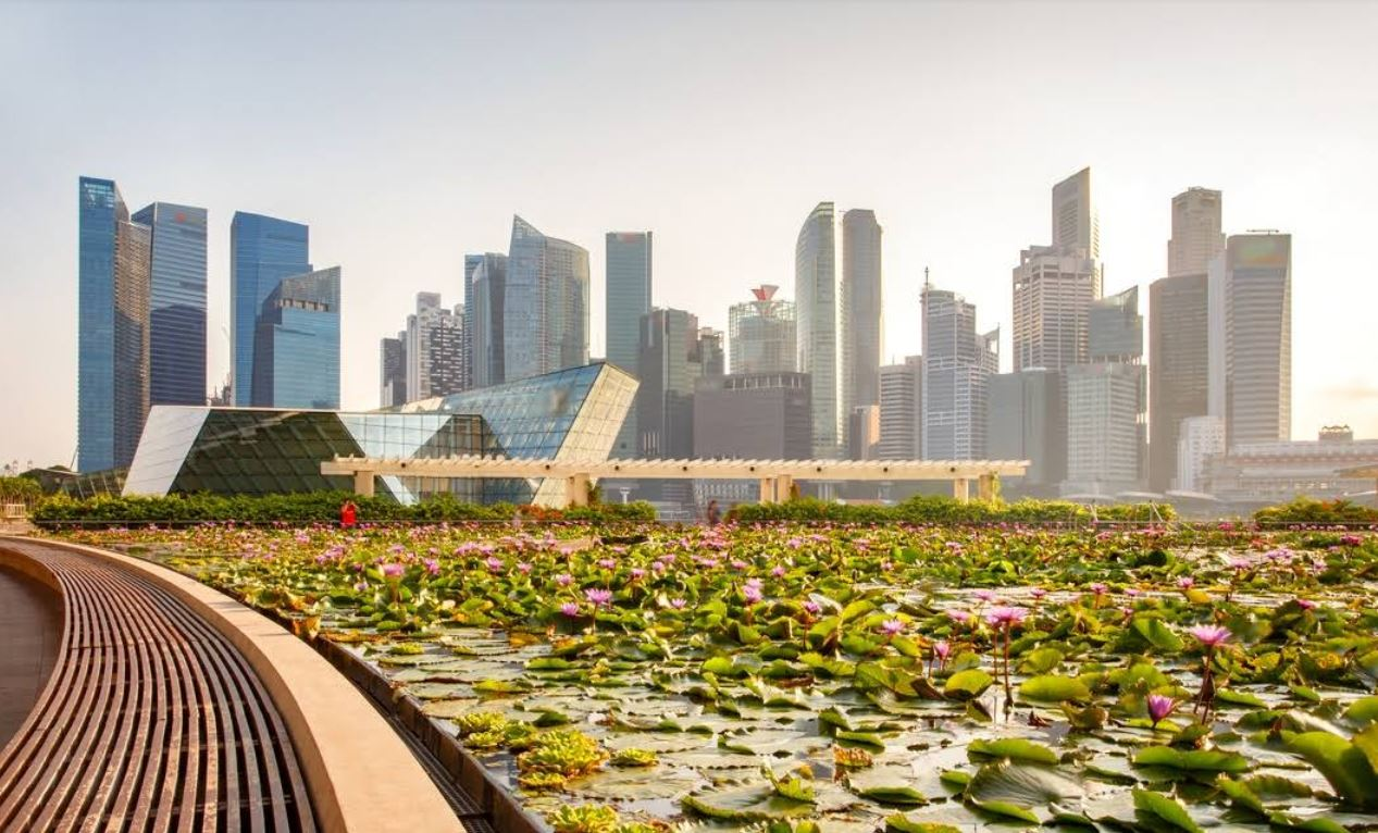 Marina Bay and City Hall Guide in Singapore